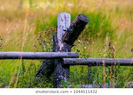 Rustic Fence Post Wooden Rail Fence Stock Photo Edit Now 1044511432