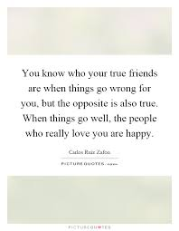 you know who your true friends are when things go wrong for you
