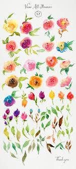 Pin by Adeline Myers on Watercolor | Watercolor rose, Watercolour  inspiration, Watercolor graphic