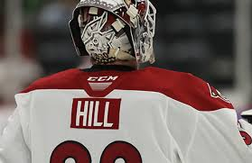 Coyotes Sign Adin Hill To One-Year Contract - TucsonRoadrunners.com