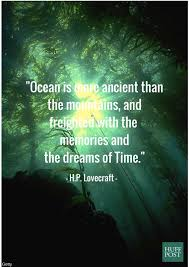 quotes about the ocean that remind us to protect it huffpost