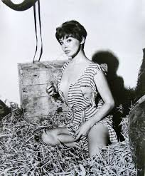 Picture of Janet Munro