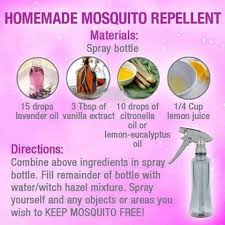 homemade mosquito repellent pictures