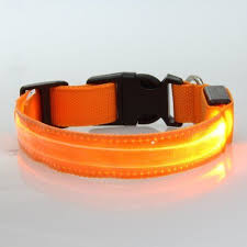 Pin On Collars For Dogs