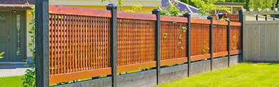 How To Create Outdoor Privacy For Your Garden Mitre 10