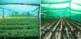 shade net gardening advantages ideas
