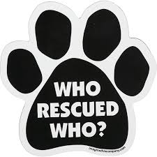 Imagine This Who Rescued Who Paw Shaped Car Magnet Petco