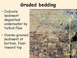 sedimentary rocks flashcards quizlet