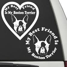 Boston Terrier My Best Friend Is My Dog Decal Sunburst Reflections