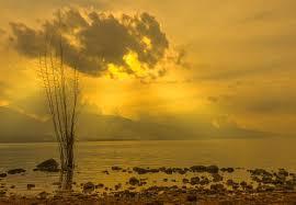 Danau Singkarak , Endemik Ikan Bilih | Kenasih.Com