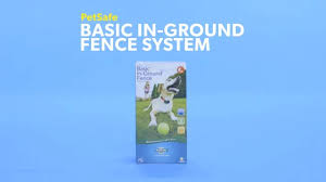 Petsafe Basic In Ground Fence System Chewy Com