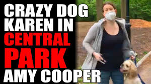 Amy Cooper calling the police and ...