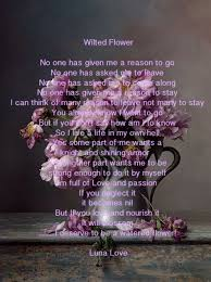poetry poet luna love wilted flower literary quotes author
