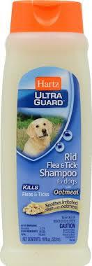 the 5 best pet flea shoos