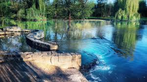 Calming water sounds ~ water pooling into a pond ~ birds chirping ...