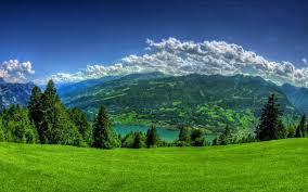 صور وخلفيات طبيعية جميلة خليفات مياه وشلالات خلفيات خضراء صورميكس