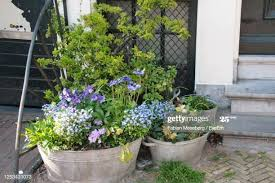 527 Fence Flower Pots Photos And Premium High Res Pictures Getty Images