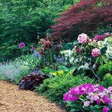 pink springtime garden plan garden