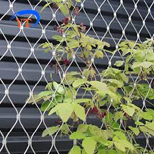 Plant Climbing Ropes Green Wall Wire Mesh Fence For Boundary Wall Buy Green Wall Mesh Fence Plant Climbing Ropes Wire Mesh Fence For Boundary Wall Product On Alibaba Com