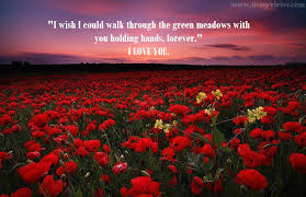 beautiful rose flower widescreen r tic quote