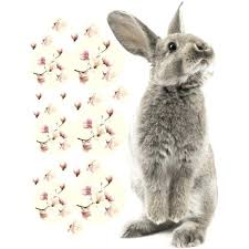 Kids Walldecal Bunny With Flowers North Nik
