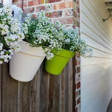 Plastic Hanging Planter Pots For Fences Railings Annabel Trends Yellow Octopus
