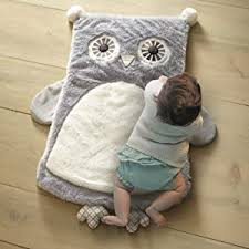 Amazon Com Levtex Home Baby Night Owl Fox Playmat Taupe Baby