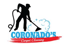 vector vacuum steam cleaning