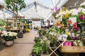 london s 5 most stylish garden centres