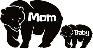 Amazon Com Jb Print Mama Bear With Cub Vinyl Decal Sticker Car Waterproof Car Decal Bumper Sticker 5 Kitchen Dining