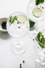 gin and tonic recipe 3 ways to