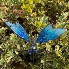 blue glass dragonfly outdoor garden