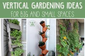 vertical gardening for big or small