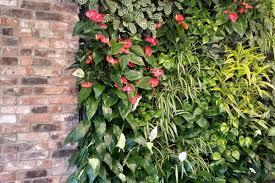 modulogreen living walls bynaturedesign