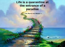 Life is a quarantine at the entrance of a paradise... - StatusMind.com