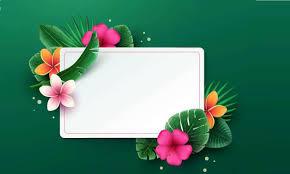 أجمل صور خلفيات ورود و زهور للكتابة عليها 2020