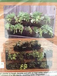 plant hangers hooks vertical wall