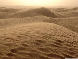 Technology Gaming صحراء
