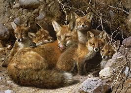 carl brenders full house fox family
