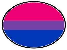 Amazon Com Gay Rainbow Sisters Bisexual Pride Flag Auto Magnet Automotive