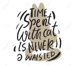 time spent cat is never waisted hand lettering quotes about