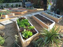 malibu vegetable garden