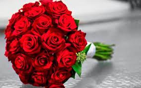 اجمل الورود للعشاق