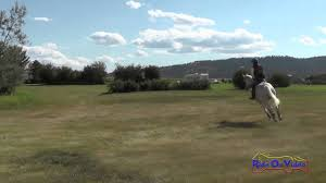 353XC Ava Cox on Pecoso JR Training Cross Country The Event at Rebecca Farm  July 2015 - YouTube