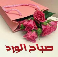 May Sayegh Maygsayegh تويتر Good Morning Arabic Good Night