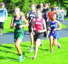 BV's Weidner, Amboy's Hosto & Grady happy for competition   SaukValley.com