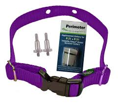 Invisible Fence Microlite Dog Fence Spring Post Collar Refreshment Kit