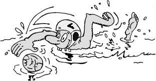 Bestuur Info Lidmaatschap Info Zwemonderdelen Schoon Veilig Water