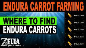 endura carrot farming a stamina