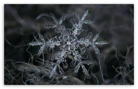 snowflake macro ultra hd desktop